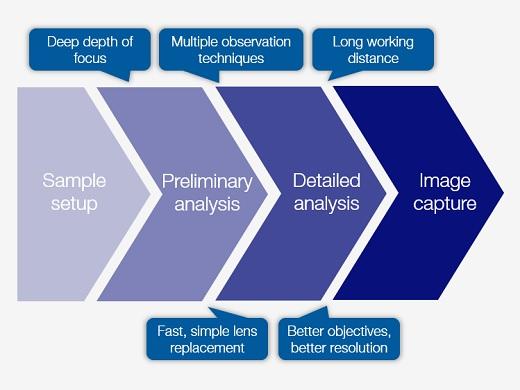 Imágenes panorámicas de baja magnificación y análisis a nivel micrométrico en un mismo sistema
