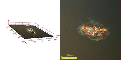 Rust defect under polarized light—693x, DSX510 microscope.