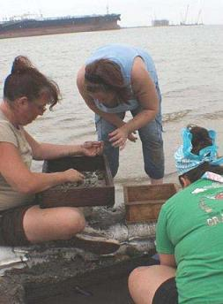 Archeaologists ID'ing human remains.