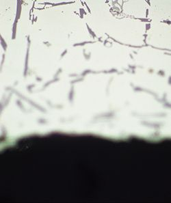 Polished sample of AlSi: Both images are partially focused.